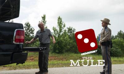 The Mule terningkast